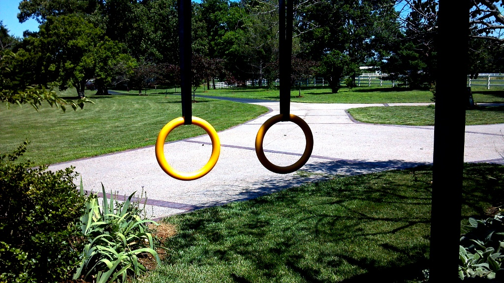 "Nayoya are the Best Plastic Gymnastic Rings for Home or ""Elite-Fitness"""